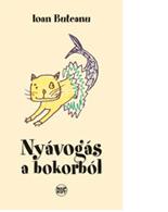 Ioan Buteanu: Nyávogás a bokorból